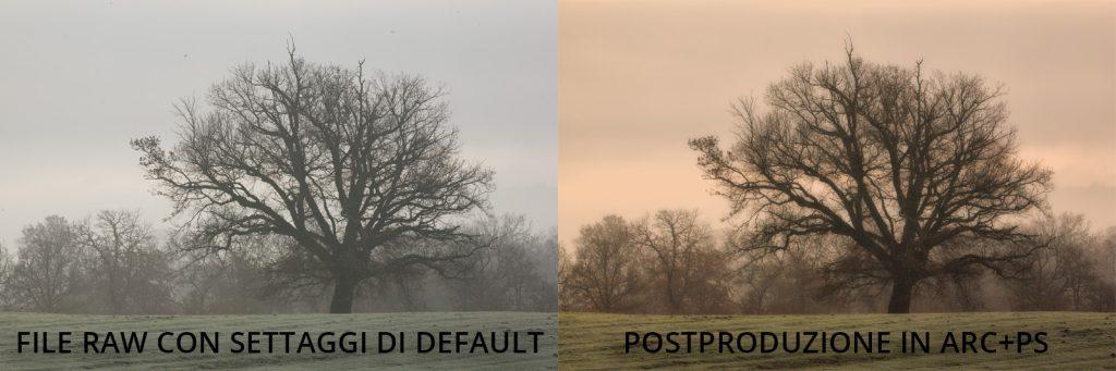 Prima e dopo la postproduzione con Adobe Camera Raw ACR e Photoshop